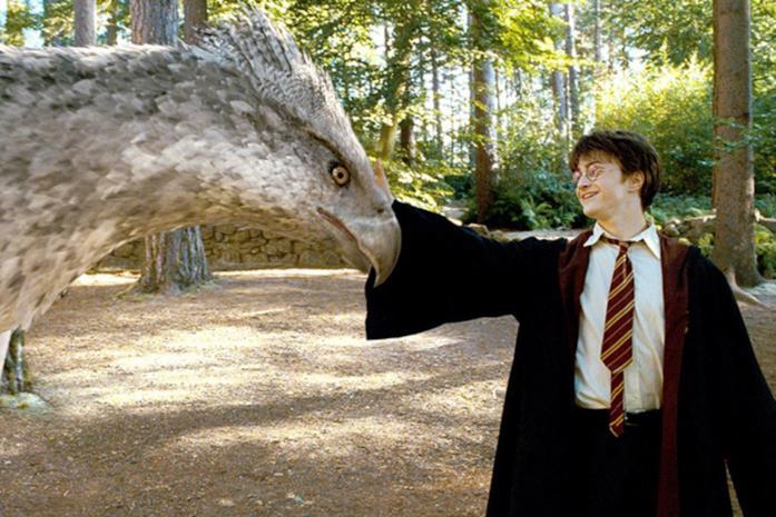 Harry Potter e Fierobecco in una scena del film