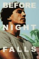 Poster Prima che sia notte