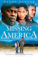 Poster Missing in America