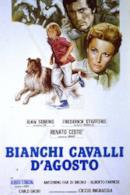 Poster Bianchi cavalli d'Agosto