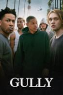 Poster Gully