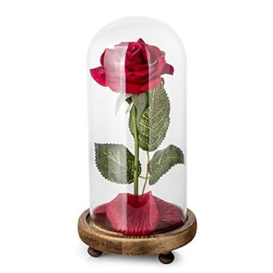 Kit di Rose La Bella e la Bestia