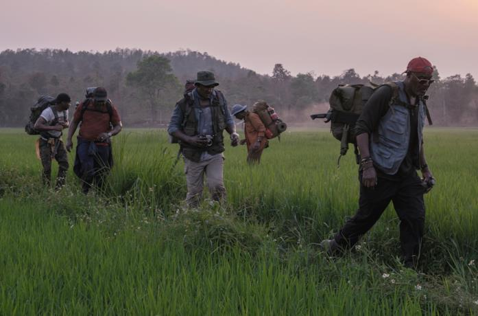 I quattro veterani attraversano un campo di riso