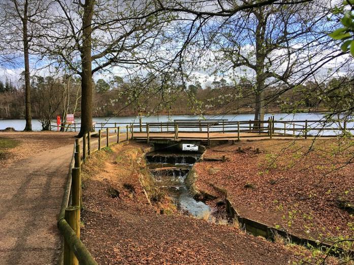 Black Park, Buckinghamshire