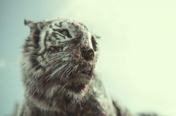 Cinque cose da sapere su Valentine, la tigre zombie di Army of the Dead