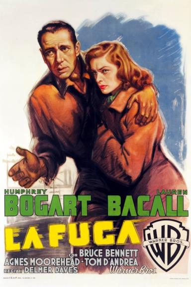 Poster La fuga