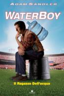 Poster Waterboy