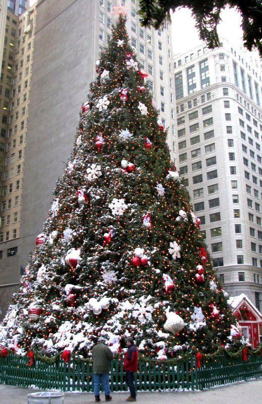 Albero di Natale a Chicago