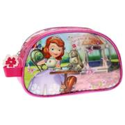 Disney Beauty case