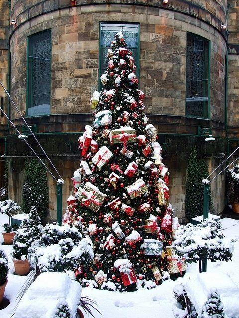 Albero di Natale di Edimburgo, Scozia