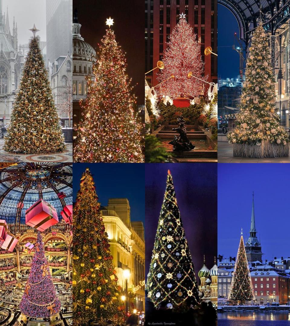 Migliori alberi di natale nelle città del mondo
