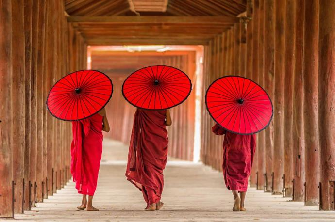 Monks with umbrellas, Myanmar