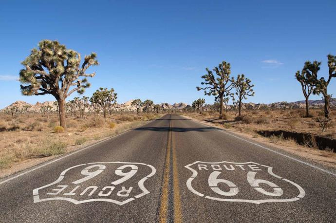Joshua Tree National Park Route 66 in the Usa