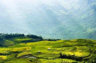 Rice fields and ethnic minorities: what to see in Sapa