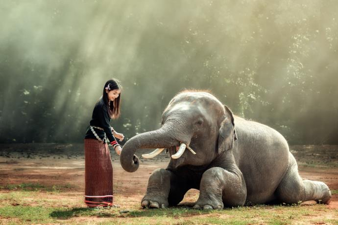 Woman with elephant in Myanmar