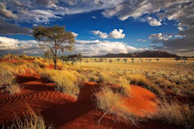 5 things you didn't know about Namibia