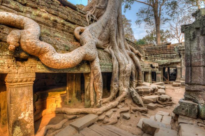Ta Prohm temple in Siem Reap's Angkor Wat