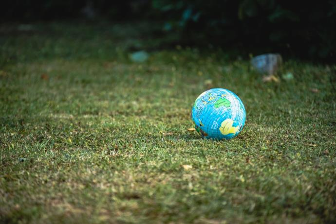 a globe lying on the grass