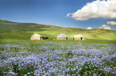 10 strange facts about Kyrgyzstan you probably didn't know
