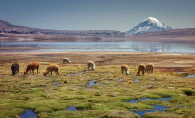 Quando andare in Cile: tutti i consigli e informazioni utili sul clima