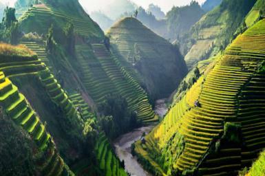 Vietnam: i migliori tour e i consigli utili per organizzare il viaggio