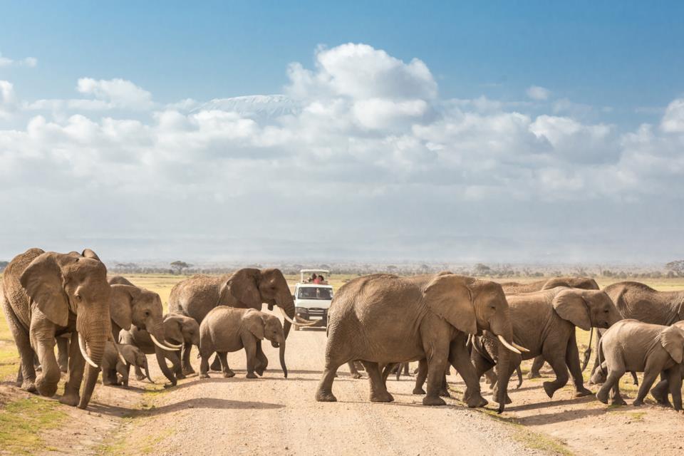 Safari al Parco nazionale Amboseli in Kenya