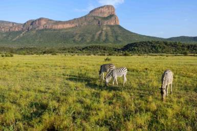 Sudafrica, parchi nazionali e riserve naturali