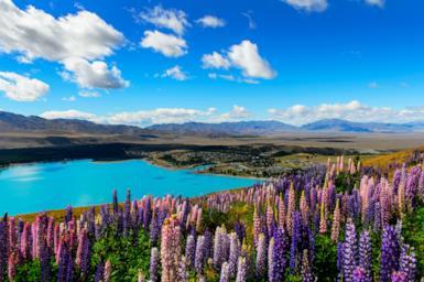 Nuova Zelanda, la terra delle meraviglie: 5 motivi per partire