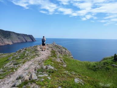 Terranova: l'isola canadese che affascina anche d'estate