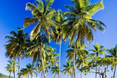 Il clima di Cuba e quando visitare