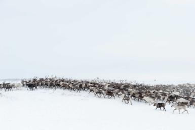 Siberia e Transiberiana: all'avventura nella terra dei grandi silenzi