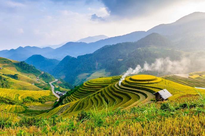 Vista dall'alto di una risaia, Vietnam