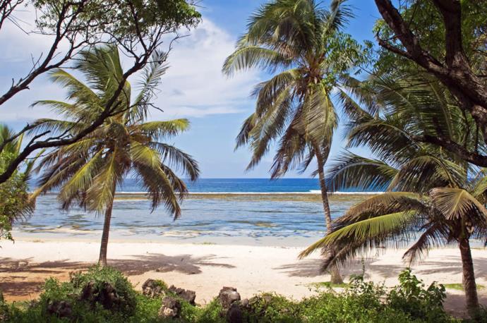Spiaggia con palme in Kenya