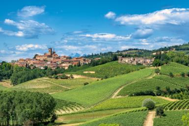 Piemonte: gita d'autunno nelle Langhe e nel Monferrato tra vino e tartufi