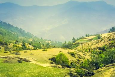 Kerala e backwaters: il paradiso verde dell'India