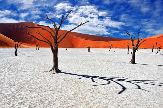 Paesaggio tipico del Deadvlei in Namibia