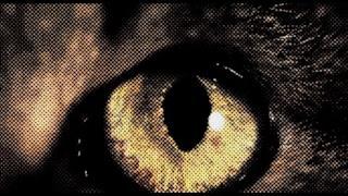 Anna Lunoe - Stay Awake (Video ufficiale e testo)