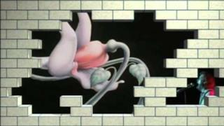 Pink Floyd - Behind The Wall - 1° parte