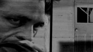 Johnny Cash - She Used To Love Me A Lot (video, testo e traduzione)
