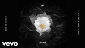 Avicii - Friend of Mine (feat. Vargas & Lagola) (Video ufficiale e testo)