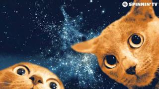 Ummet Ozcan - Spacecats (Video ufficiale e testo)
