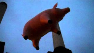 ► Pink Floyd - The pig's flies again (Battersea Power Station 2011)