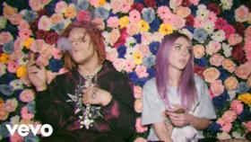 Alison Wonderland - High (feat. Trippie Redd) (Video ufficiale e testo)