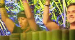 L'aftermovie dell'esibizione di Promise Land al Tomorrowland 2014