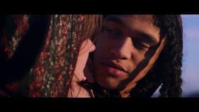 Steve Aoki - Just Hold On (Video ufficiale e testo)