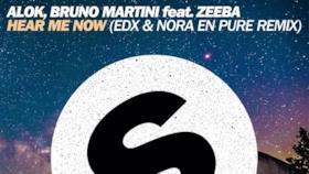 Alok - Hear Me Now (feat. Zeeba) (Video ufficiale e testo)