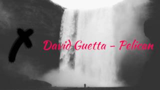 David Guetta - Pelican (Edit) (Video ufficiale e testo)