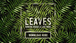 Dimitri Vegas - Leaves (Video ufficiale e testo)