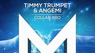 Timmy Trumpet - Collab Bro (Video ufficiale e testo)