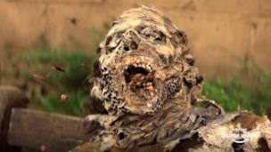 The Walking Dead: World Beyond - Trailer